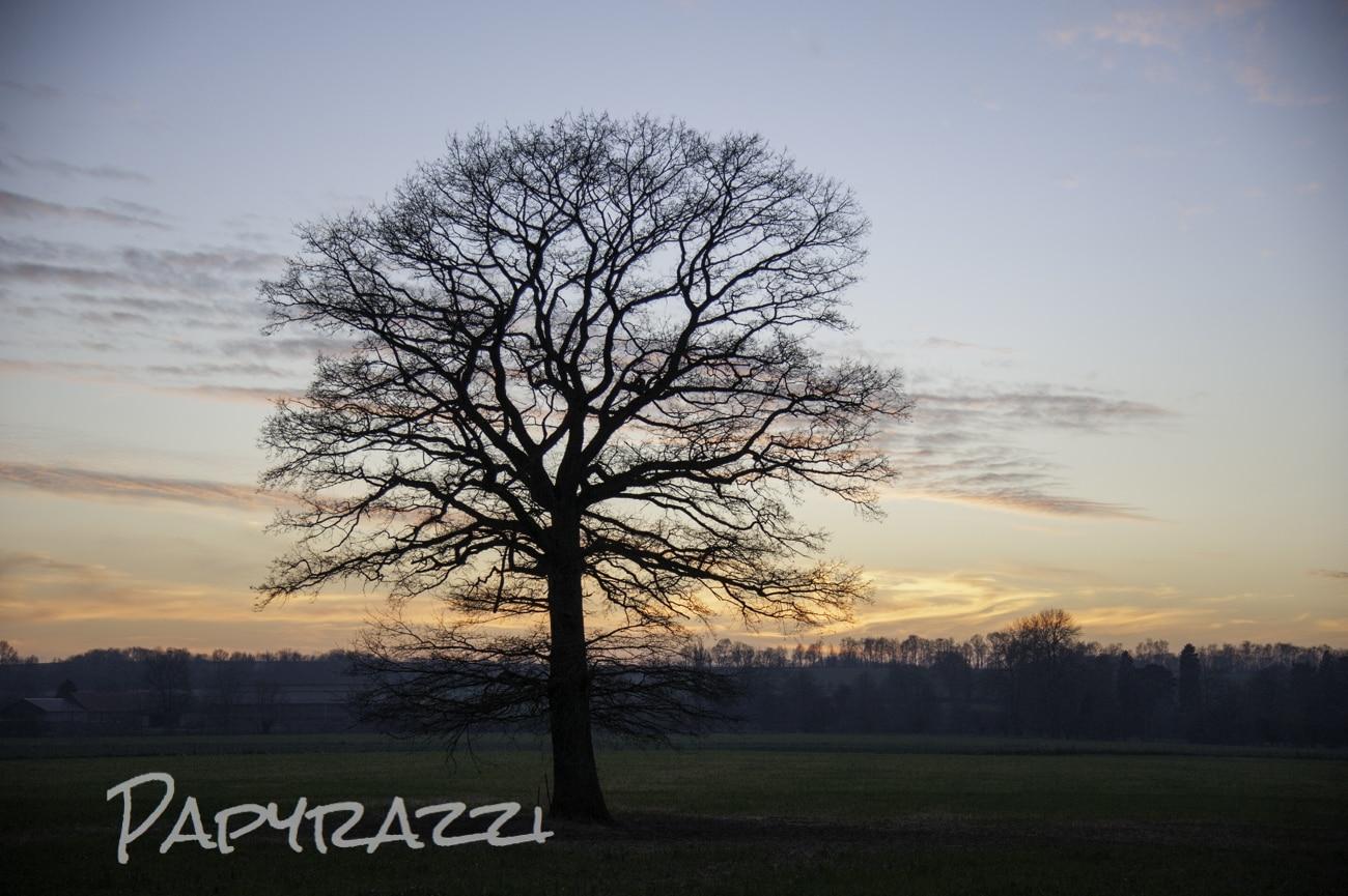 Levers et couchers de soleil papyrazzi - Lever et coucher du soleil bruxelles ...